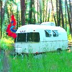 Good Camping - Janet H id: (1013)