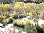 Grapevine campground on Middle fork, Gila river